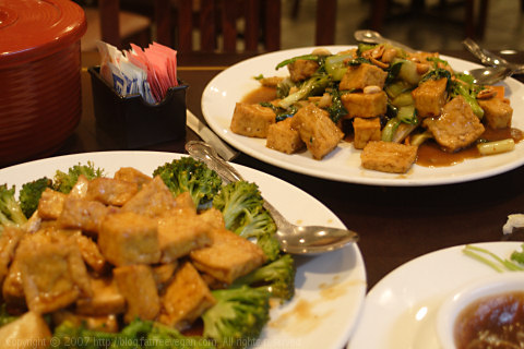 August Moon Tofu Dishes