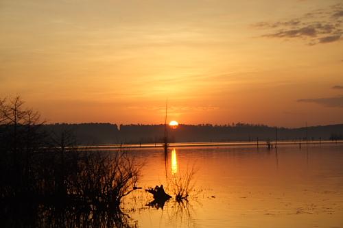 Sunrise over Lake D'Arbonne, Louisiana