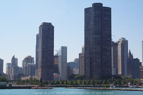 Chicago with view of City Center Hotel