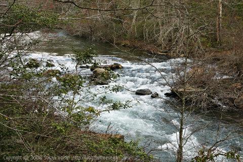 Raging River