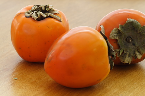 Persimmons and frozen persimmon sorbet recipe from for Cachi persimon