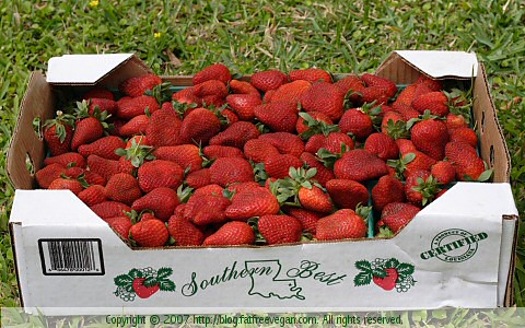 Strawberries""