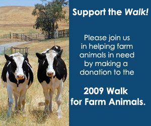 Walk for Farm Animals
