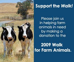 Walk for Farm Animals