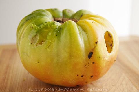Bird-eaten Tomato