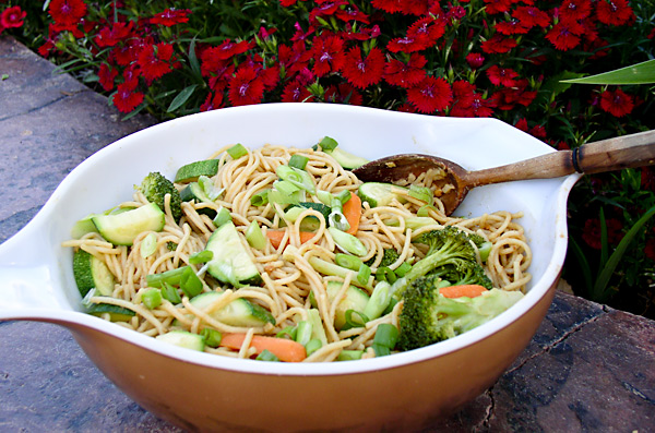 Pasta and Vegetables with Peanut Sauce at the Juniper Tree Guest House