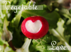Vegetable Love 2008