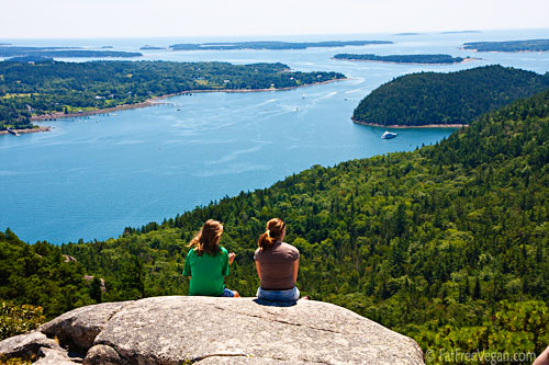 E and J on Acadia Mountain