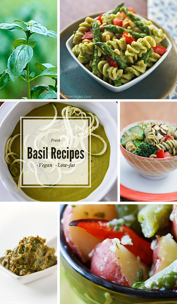 Celebrate summer with these low-fat vegan basil recipes, including oil-free vegan pesto, a basil-infused potato salad, and creamy soup.