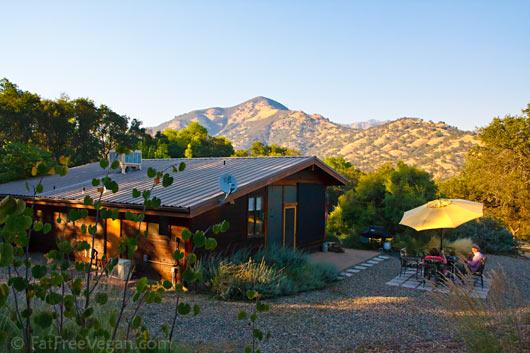 Sequoia View Cottage