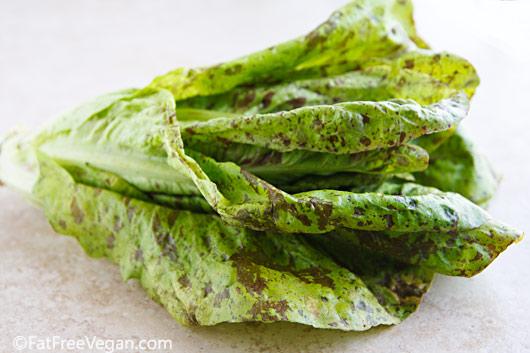 Speckled lettuce from farmer's market