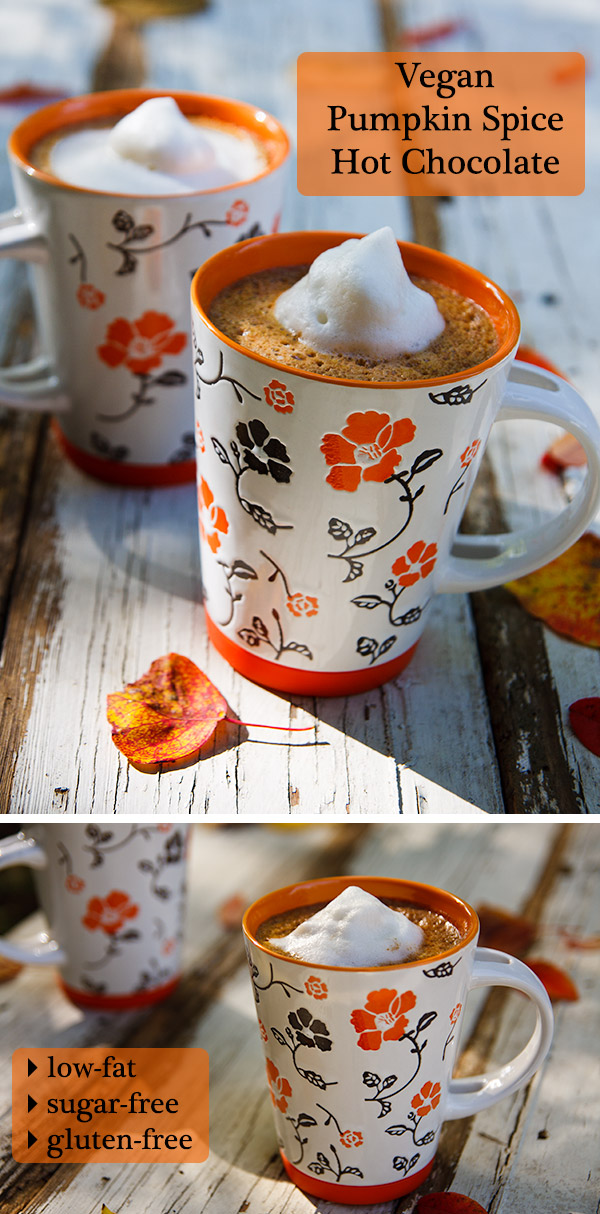 Imagine pumpkin pie and hot chocolate all mixed up together and poured into a mug and you've got this Pumpkin Spice Hot Chocolate. Spicy, sweet and warming!