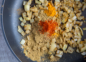 Browned onions and spices